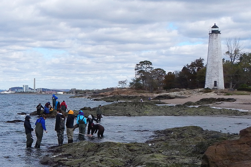 Students standing in Long Island Sound, just off shore