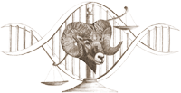The Society for Wildlife Forensic Science logo