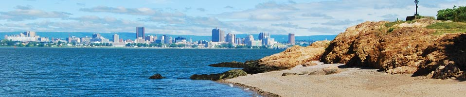 view of New Haven skyline from a beach